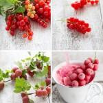 Berry Ice -Cream Johannis-Stachelbeer Eis